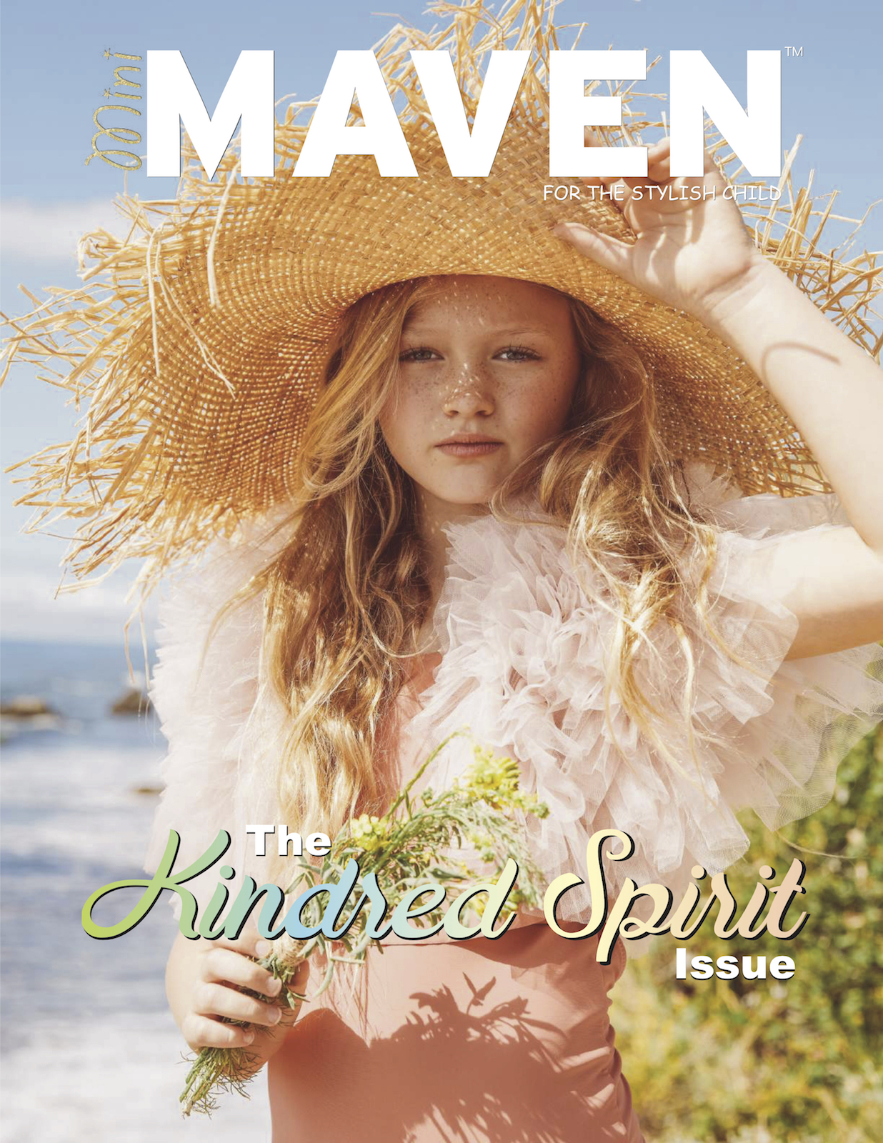 MiniMavenSPR20Coverweb